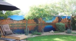Scottsdale Company Turns Indoor and Outdoor Walls into Lush Landscapes