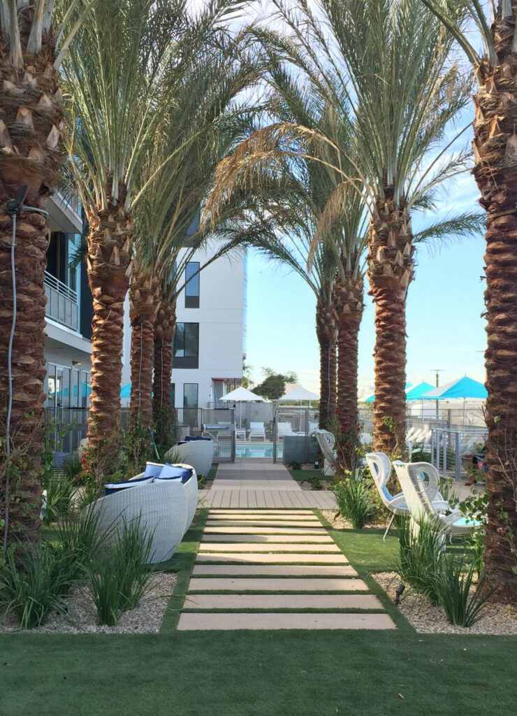 Salt Luxury Apartments Bring Resort Aesthetic To Downtown Tempe