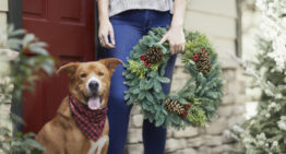 Fir Real: Get Your Wreath On