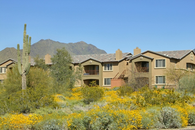 Luxury Rental: Dakota at McDowell Mountain Ranch