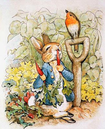 Peter rabbit is back for Beatrix potter mural wallpaper