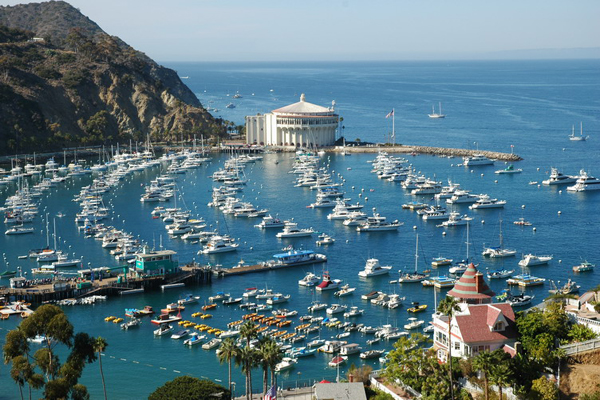 Activities Abound At Catalina Island