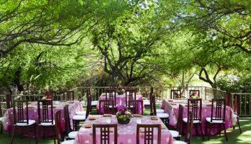 Summer Chef Series at Tucson Resort