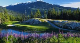 Summertime in Whistler's Adventure City