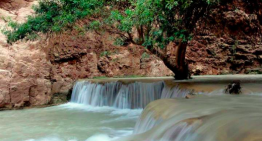A Visit To Havasupai – Gorgeous Scenery and Hearty Hikes