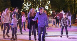 "Enjoy Hotel Palomar's ""Stay and Skate"" Holiday Special"