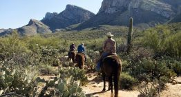 Experience the Wild West at Hilton Tucson El Conquistador