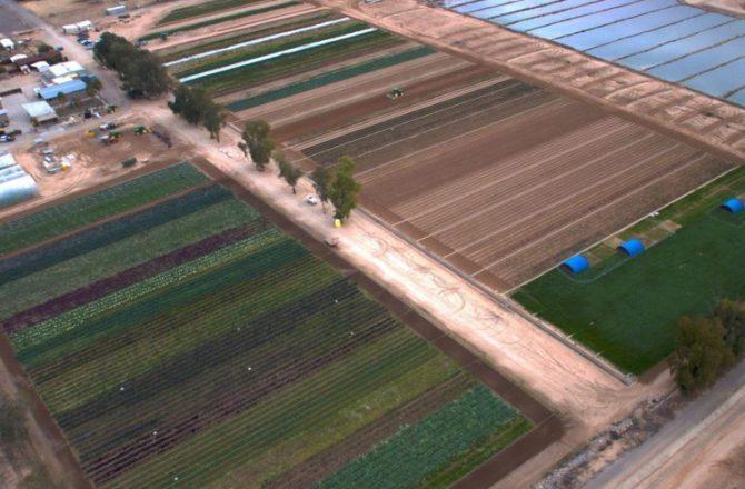 Farm to Fork Tours at Montelucia