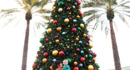 The Best Place to Watch Tree Lighting: Fairmont Princess