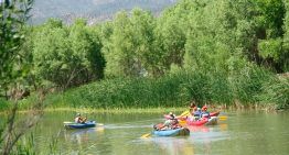 Skip the Trip and Stay Local with WeekendZona Excursions