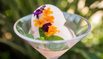 4 California Hotels Celebrating Rosé Wine