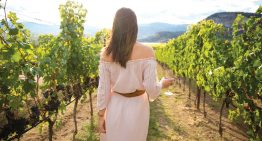 Napa Valley's Newest Lifestyle Resort Vista Collina to Open in July