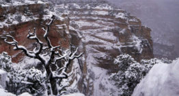 Winter Wonderland: When it Snows at the Grand Canyon