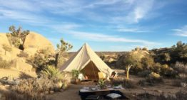 New Luxury Experience Features Glamping in Joshua Tree National Park