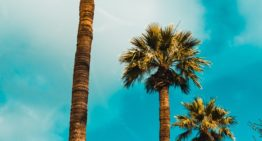 Arizona Spirit of Travel Honors the State's Hospitality Employees