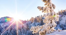 How Luxury California Ski Resorts are Prepping for a Socially Distant Season