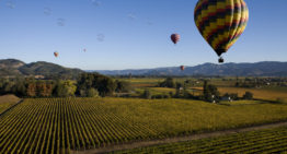 It's Time to Raise a Glass to Napa Valley Reopening