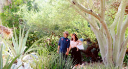 Desert Botanical Garden Offers Curated Micro Group Experiences