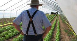 Oct. 4: Arizona Farmer+Chef Connection
