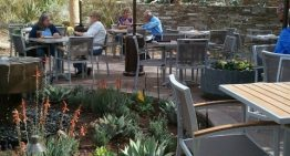 Desert Botanical Garden's Seasonal Table Dinner Series