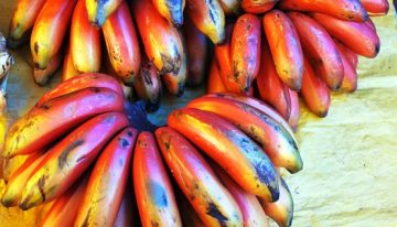 Grocery Great: Dole Red Banana