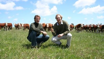 Why Choose Grass-Fed Beef?