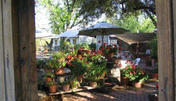 Oct. 30-Nov.6: Arizona Wine Week