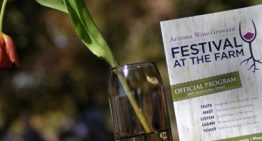 This Weekend: Festival at the Farm