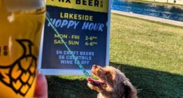 PHX Beer Co. Debuts First Dog Menu for Their Puppy-Friendly Patio