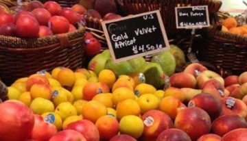 Sassi to Teach Cooking with Summer Fruit