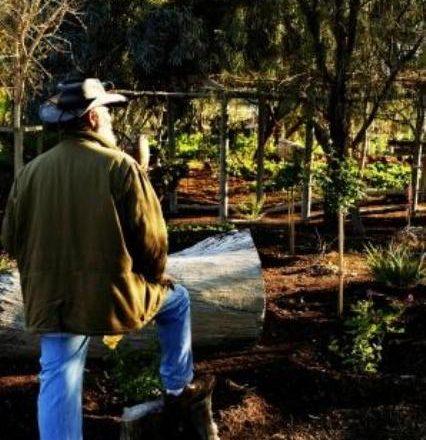 Phoenix Farm Introduces Workshops