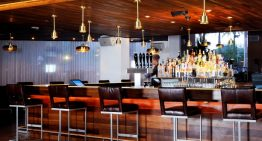 New Social Schedule at Stone Rose Lounge