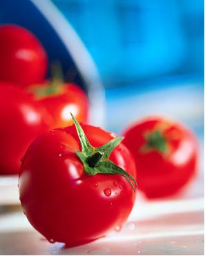 tomatoes20image