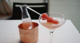 Recipe: Watermelon Elyx