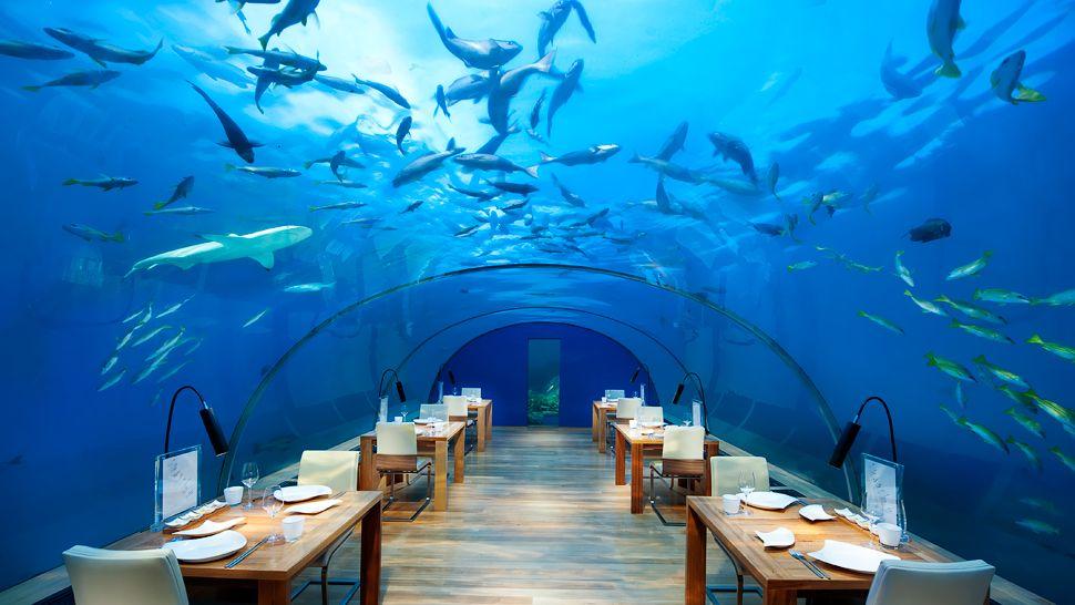 005276-16-Ithaa-Undersea-Restaurant