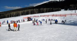 Hit the Slopes: Skiing and Sledding in Arizona