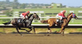Del Mar Horse Races 2012