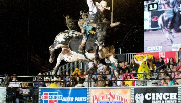 Bull Riding and Country Music at the Scottsdale Showdown