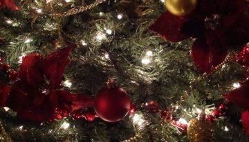 Solved: Christmas Tree Decorating Challenges
