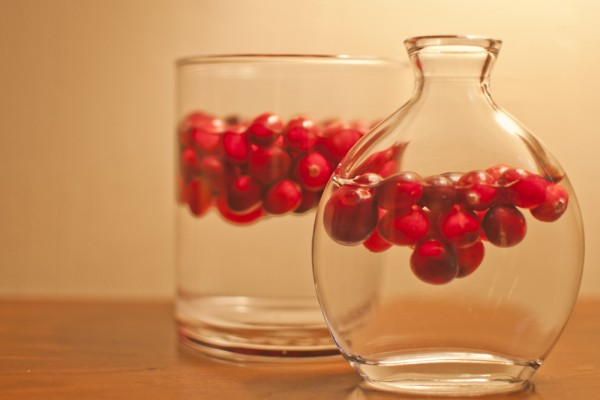 Cranberry-Christmas-Floating-600x400