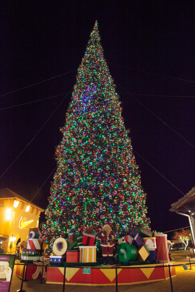 Arizonans Can Count on State's Tallest Christmas Tree ...