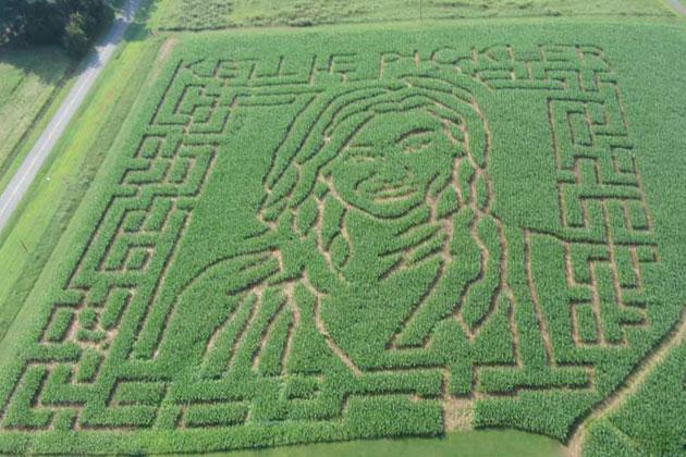 Pickler-Corn-Maze