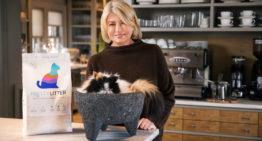 World's Smartest Cat Litter Brand, PrettyLitter, Partners with Martha Stewart