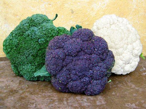 cauliflower-colors