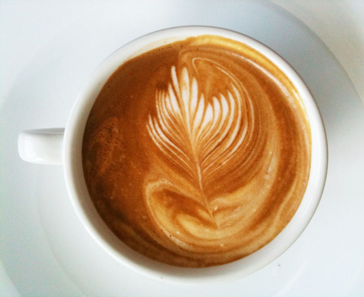 best coffee shops to study at in phoenix