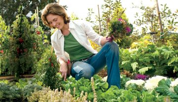 How to Grow Your Own Garden