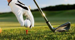 2013 Golf Ball at W Scottsdale