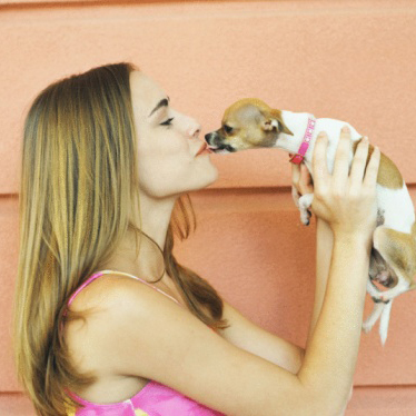 Beauty to the RESCUE: Pamper Yourself and Your Pooch