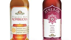 Kombucha for a Healthy Lifestyle