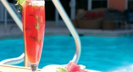 DIY Summer Poolside Cocktails